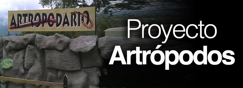 proyecto_artropodos